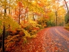 fall_wisconsin_colorful